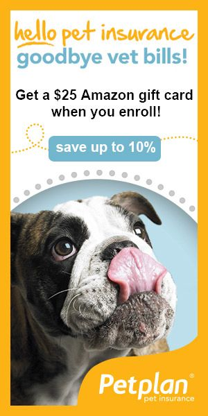 Petplan dog insurance - save up to 10%